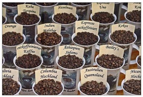 description types of coffee beans select your favorite