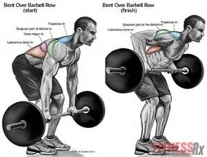 Top 8 back workout exercises for mass all bodybuilding com