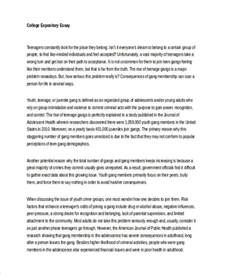 Expository Essay Format Exles by 6 Expository Essay Exles Sles