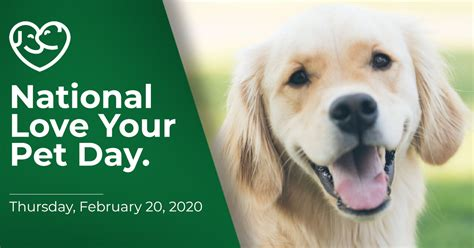 national love  pet day forefront ae forefront