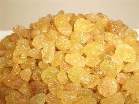 Golden Raisin benefit of plants benefits of raisins