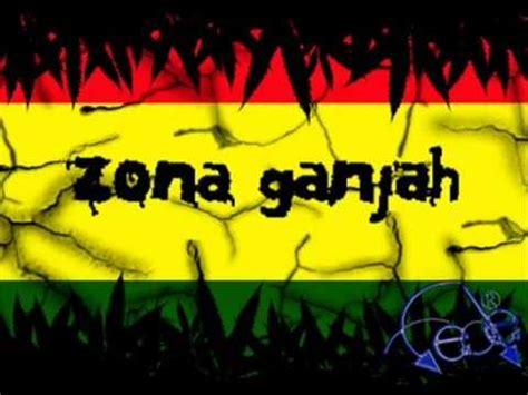 imagenes de leones de zona ganjah zona ganjah musica youtube