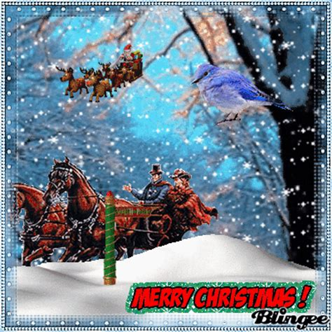 immagine merry christmas horse  carriage  santa fast sleigh  blingeecom