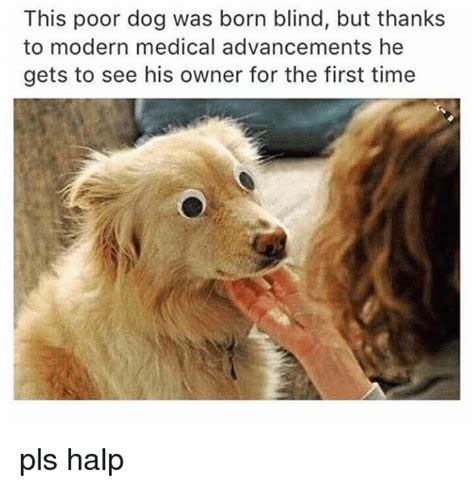 Pls Memes - 25 best memes about pls halp pls halp memes