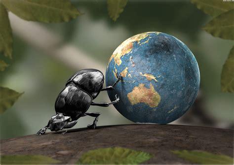 scarafaggio senza testa parole e idee possono ancora cambiare il mondo scripta