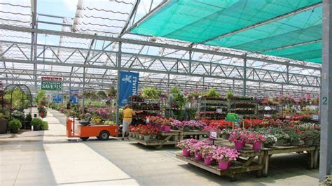 Petites Garden by How Growers Can Help Retailers Sell More In
