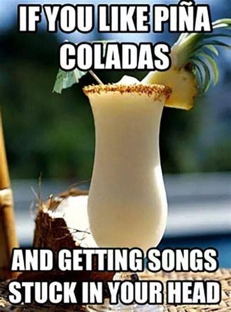 Cocktail Meme - drink meme funny pictures quotes memes jokes