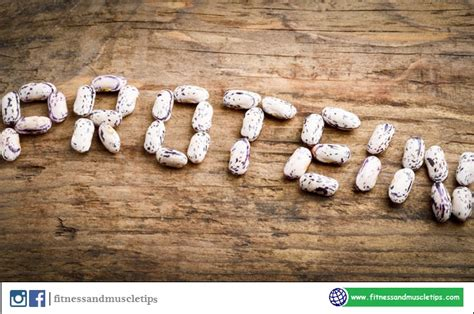protein 5 deficiency 5 protein deficiency symptoms fitnessandmuscletips