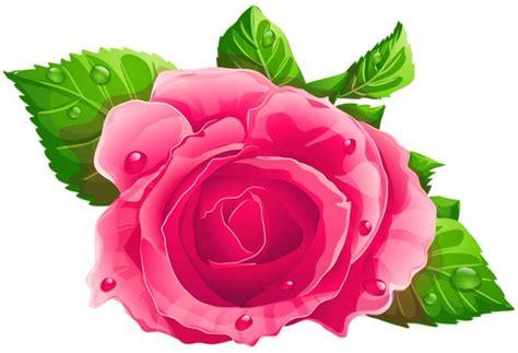 google pink roses clipart png vov 243 pesquisa google flowers pinterest