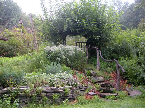 Garden Forest by Edible Forest Gardens The Resiliency Institute The
