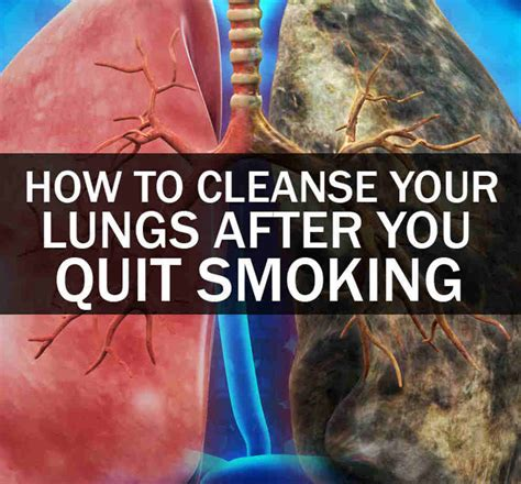 How To Detox Your From Cigarette Smoke by How To Cleanse Your Lungs After You Quit A