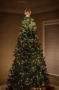 reason for christmas trees 521 best summit arbor trees images on time trees and