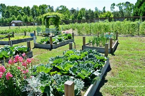 big vegetable garden big backyard vegetable garden house decor ideas