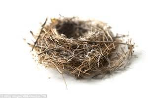 nesting co parenting to continue the nuclear family after divorce books bird s nest parenting sees children keep of the