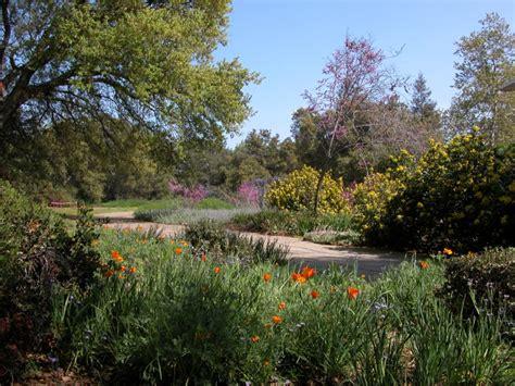 Grapevine Canyon Petroglyphs Rancho Santa Botanical Gardens