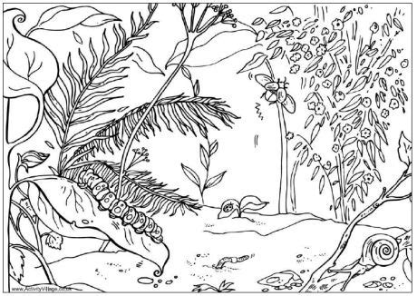 jungle habitat coloring page jungle habitat coloring pages sketch coloring page