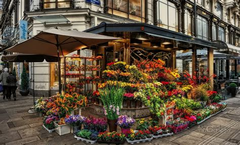 Flower Store by Flower Shop Part 1 Weneedfun