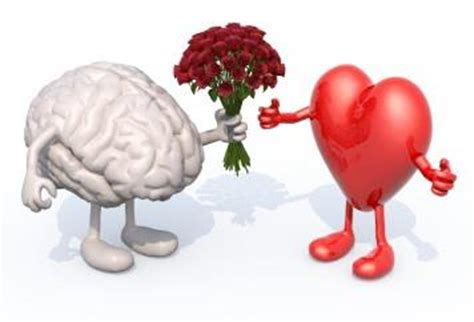 libro heart and brain an healthy brains rely on healthy hearts healthy brains by