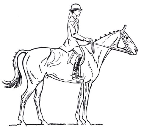 How To Draw A Saddle