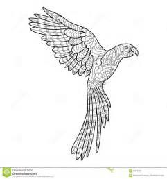 livre coloriage perroquet pour le vecteur adultes illustration vecteur image 69679493