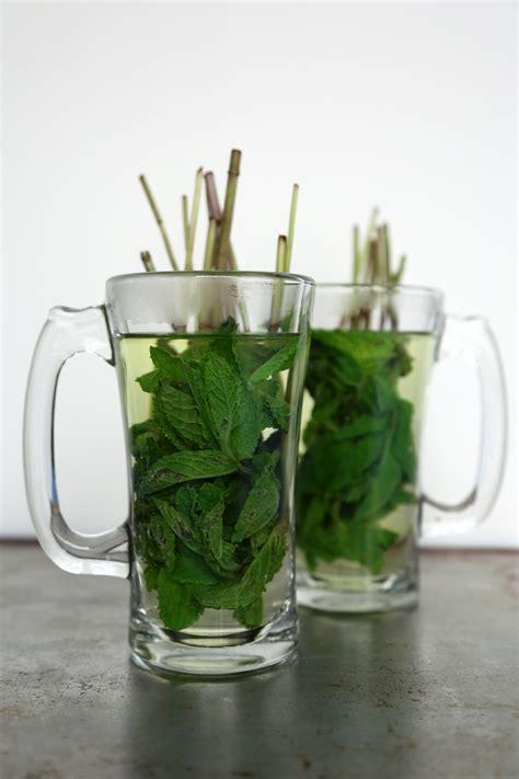 mint tea recipe popsugar food