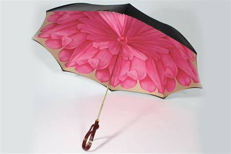 april showers    umbrellas  spring vibe