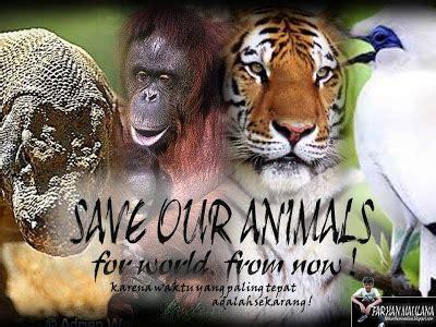 membuat poster tentang hewan miss right november 2013