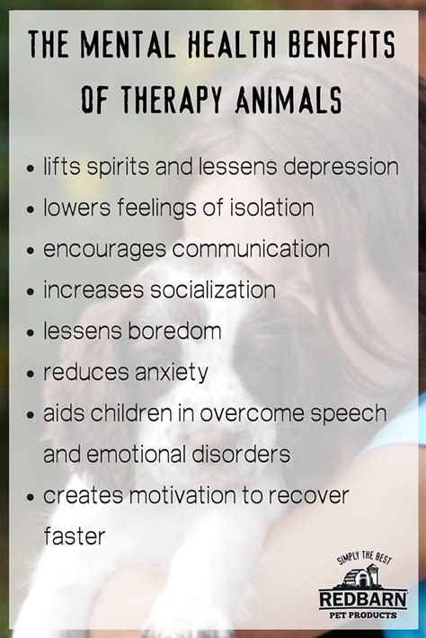 what is therapy in mental health the benefits of therapy animals for physical and mental health
