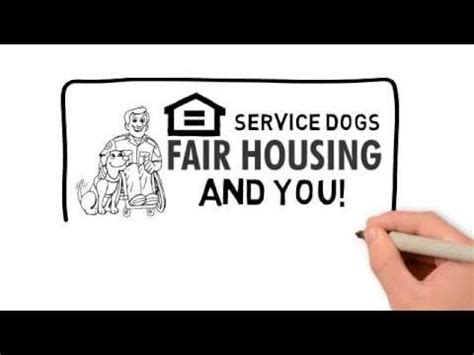 Service Dogs Emotional Support Dogs Housing Laws Best