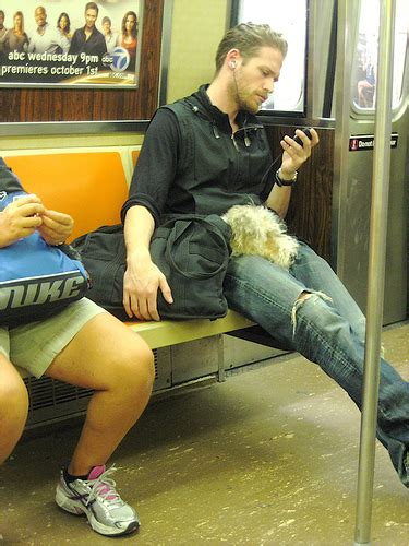 dogs on nyc subway sleepy in new york subway a photo on flickriver
