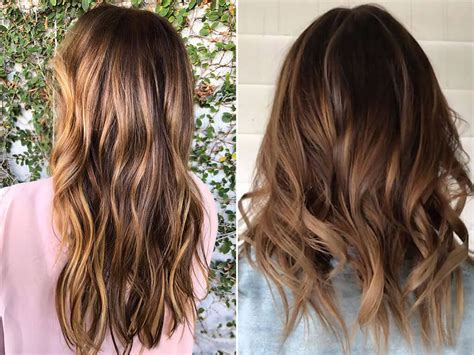 all of the 2017 hair tiger eye hair hair color 2017
