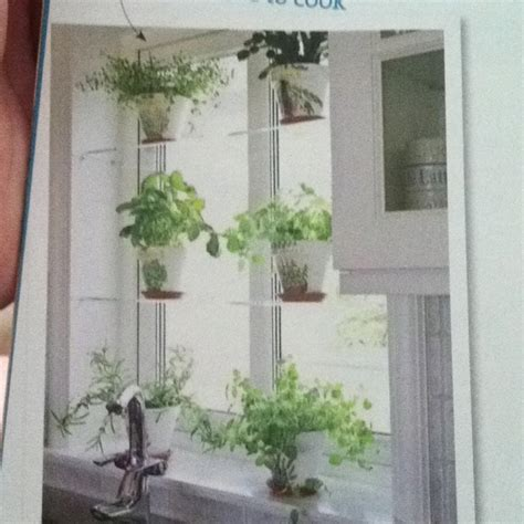 Kitchen Window Shelf For Herbs by 17 Best Images About Window Shelves On Mosaic