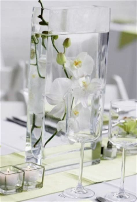17 Best images about Phalaenopsis orchids arrangements on