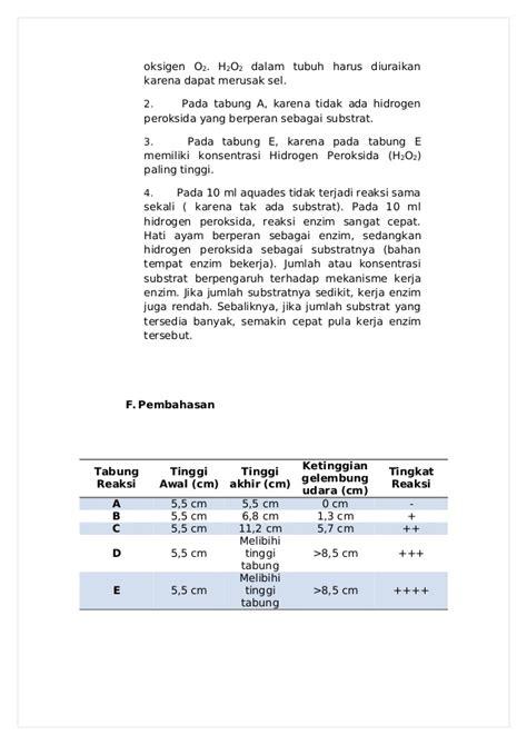 contoh pembuatan laporan praktikum biologi contoh laporan kerja biologi contoh aneka