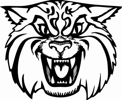 printable coloring pages of wild cats wildcat coloring pages coloring home
