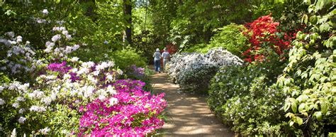 barton wyatt country gardens don t hold back