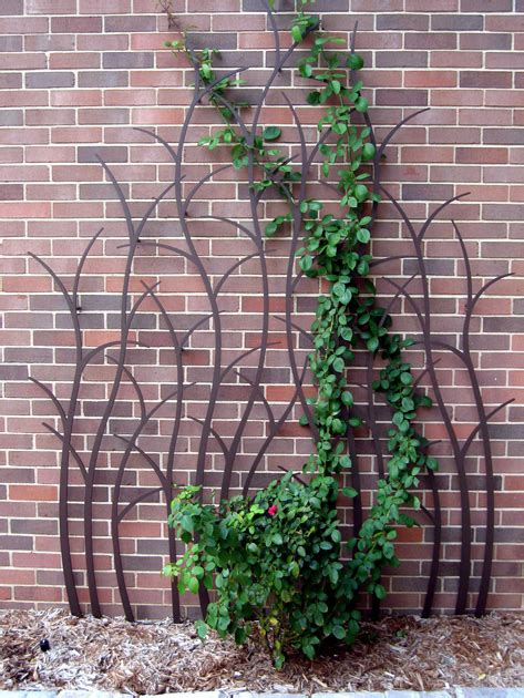 Rose Trellis Plans pics photos climbing rose trellis plans http lahomlans