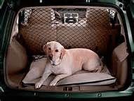 jeep dog bed cargo area dog bed just for jeeps article directory