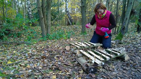patterns in nature ks1 new courses for feb 2015 at bishops wood worcestershire