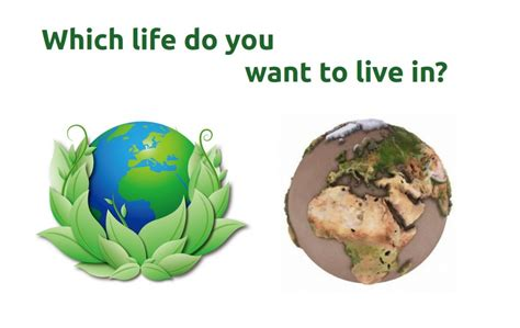 how to design for environment and minimize life cycle cost are biomass briquettes sufficient to reduce air pollution