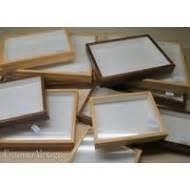 cassette entomologiche scatole cassette entomologiche per insetti farfalle con