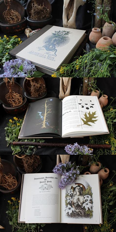 veneficium magic witchcraft and the poison path books 582 best kitchen witchery images on kitchen