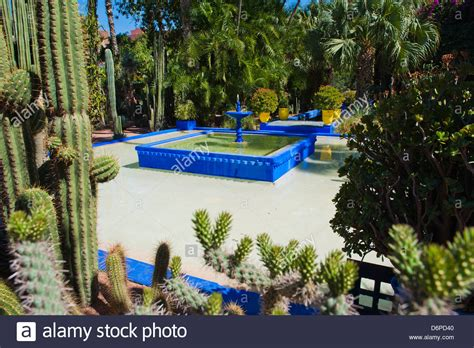 Garten Yves Laurent Marrakech by Blue And Cactus In The Majorelle Gardens Gardens