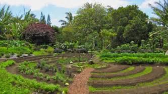 permaculture et autonomie plus de 50 pdf inform