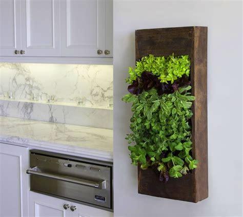 inside gardening ideas beautify your home with an original vertical garden
