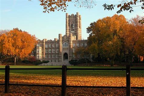 Fordham Mba Review by Top 10 Colleges For An Degree In New York Ny