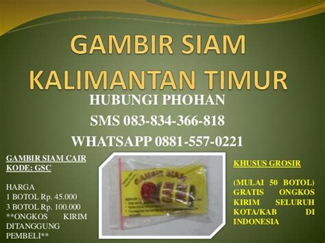 Herbal Kuat Tahan Lama Gambir Siam Cair Ori Gambir Asli Kalimantan d sms 6283 834 366 818 gambir siam kalimantan timur