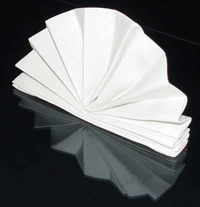 How To Fold A Paper Fan - folding cloth napkins the standing fan napkin fold