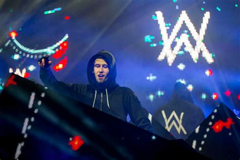 alan walker i need you have heard a lot about india want to experience it dj