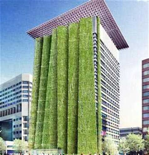 Vertical Garden Building Vertical Garden Ideas For Your Apartment
